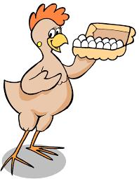 chicken-images